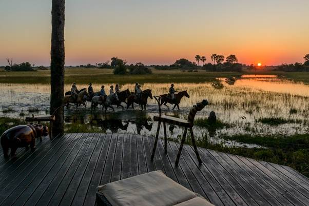 African Horseback Safaris horse riding sundowners in the Okavango Delta Botswana