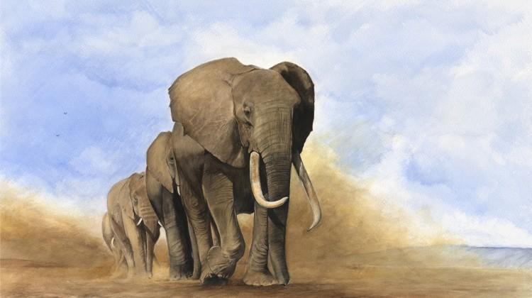 'Somnambulist' 4 elephants walking in a line, blue sky and dust watercolour art Simon Stevenson