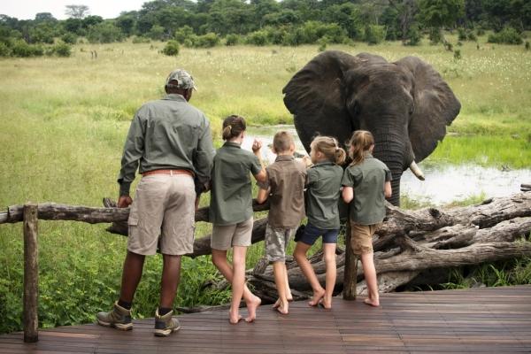 Family safaris children guide elephant Somalisa Camp Hwange Zimbabwe @africanbushcamps