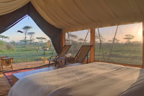 Serengeti-Under-Canvas-Ensuite-Tent-Dawn-Serengeti-Tanzania