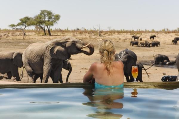 Somalisa-Pool-Elephants-Somalisa Camp Hwange Zimbabwe @africanbushcamps 600 400