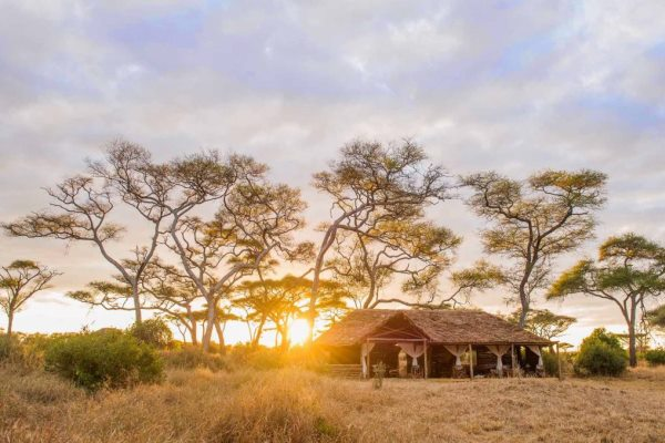 Tanzania-Kuro-Tarangire-Tent-Exterior-Sunrise-@NomadTanzania-600-400