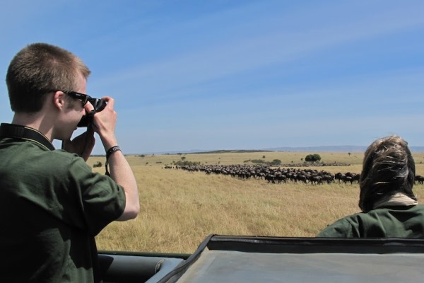 Wildebeest-Game-Drive-Serian-North-Serengeti-Tanzania