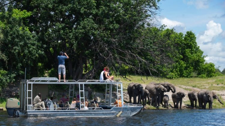 Zambezi Queen luxury Botswana safari cruise