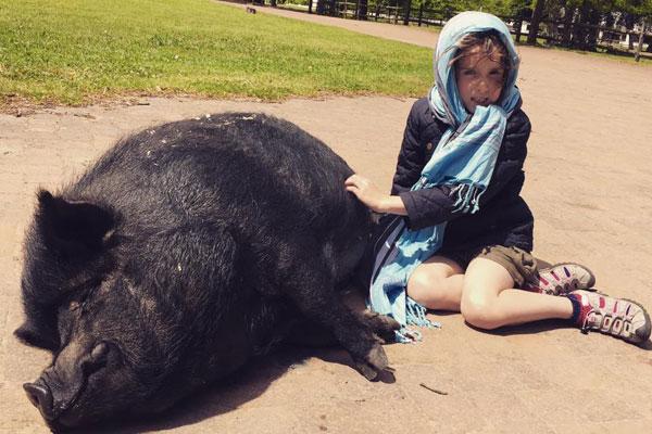 kurland-vietnames-pot-bellied-pig-gully-family@kurlandhotel