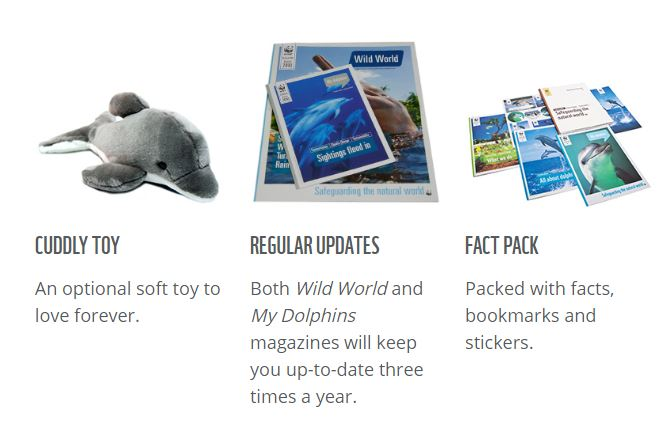 wwf-adopt-an-animal-pack-dolphin-christmas-gift