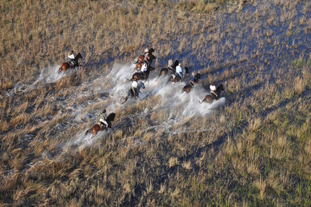 Galloping through the Okavango Delta with African Horseback Safaris