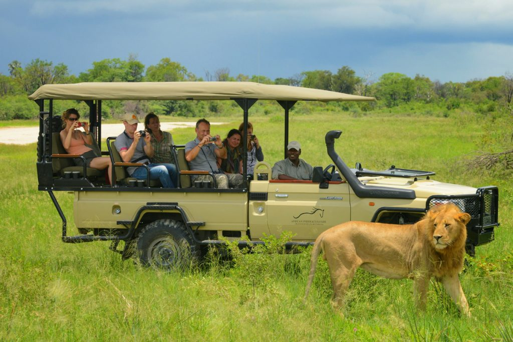 Game drives with African Horseback Safaris