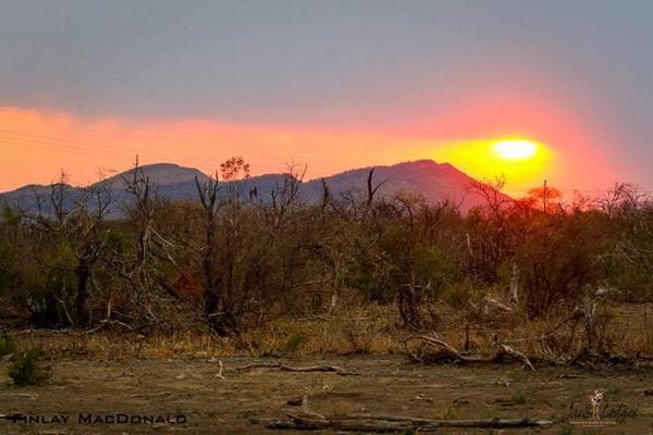 finlay-macdonald-jacis-camp-madikwe-southafrica-sunset