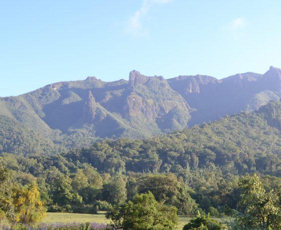 Bale Mountains