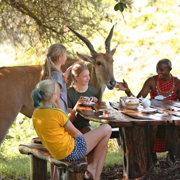 Best-for-Family-Saruni-Mara-_Nyati