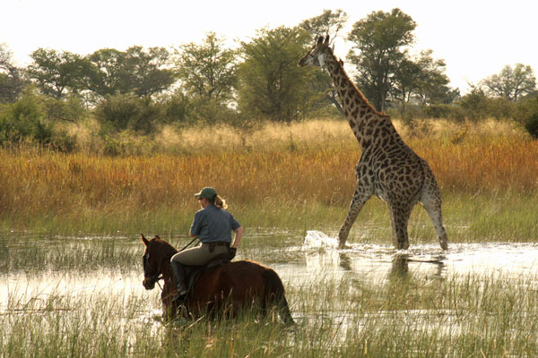 Best-for-riding-Okavango-riding