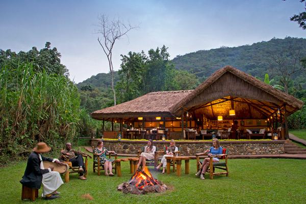 gorilla-forest-camp-camp-fire-uganda-600-400