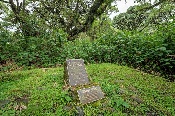 rwanda-dian-fosseys-grave-600-400