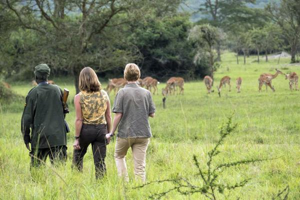 walking-safari-mihingo-600-400