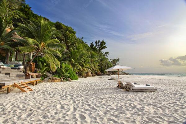 aardvark safaris facts North Island Seychelles