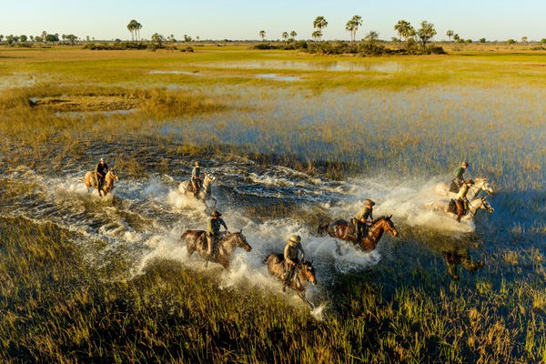 aardvark safaris facts African Horseback Safaris, Okavango Delta, Botswana