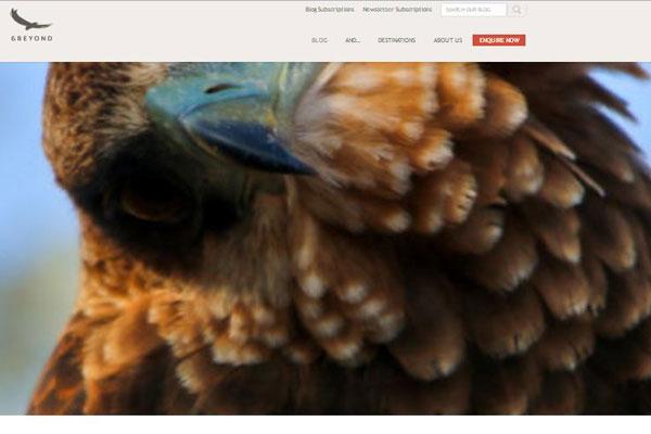 andbeyond-blog-600