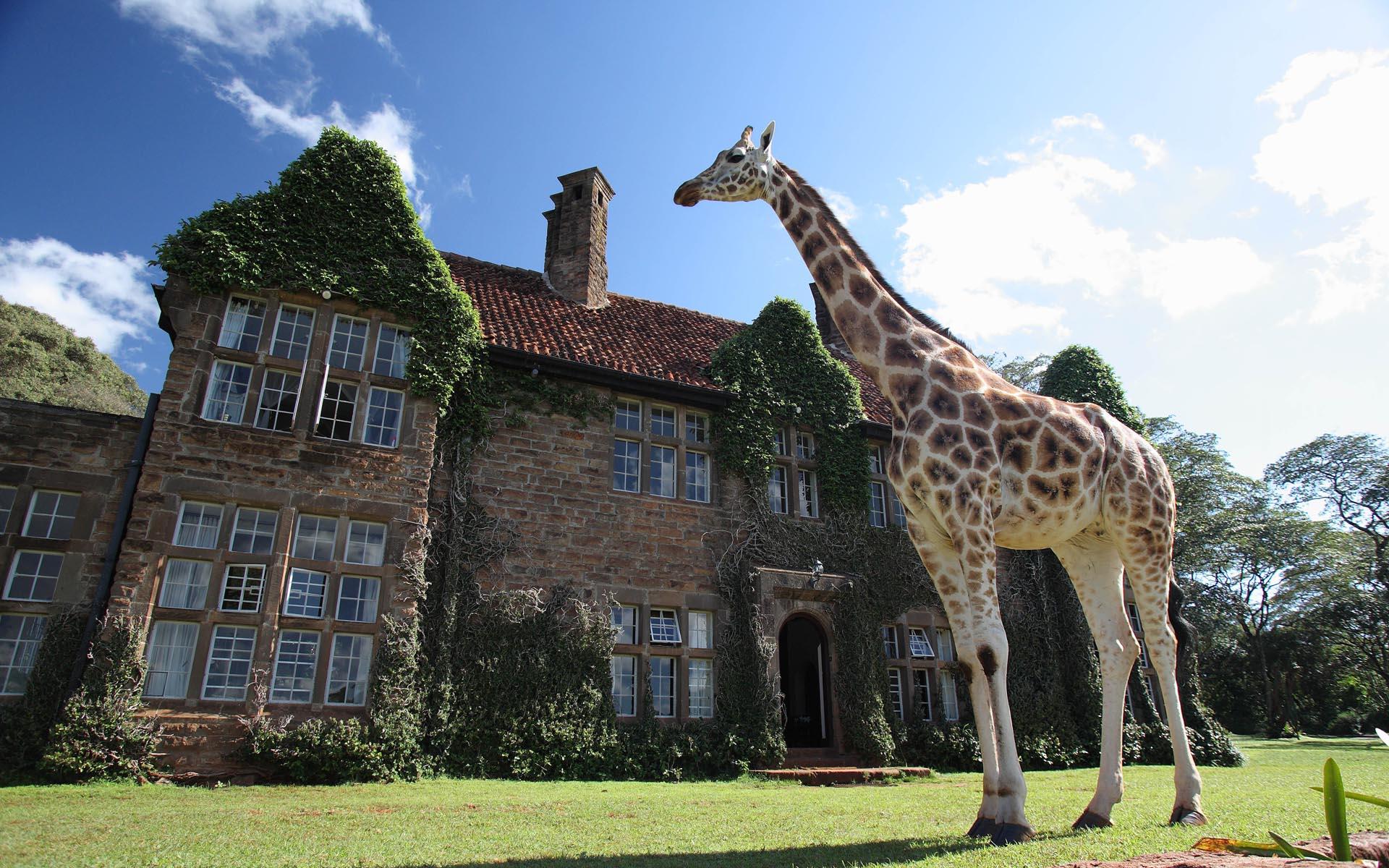 Giraffe Manor Hotel, Nairobi - Kichaka Tours and Travel Kenya