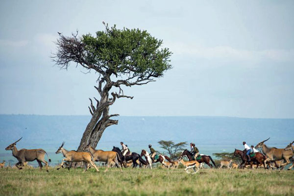 Ride Kenya riding with wildlife Masai Mara Great Plains Conservation