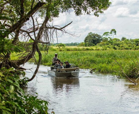Lekoli River boating in the Congo