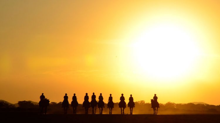 New safari rides in Africa, horse riding group silhouette at sunset, Tanzania, Kaskazi Riding Safaris