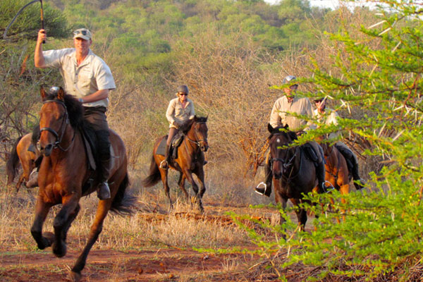 Horseriding guide Philip Kusseler taking riders on a riding safari in South Africa Wait A Little