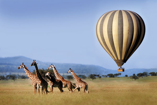 Singita Balloon over giraffes