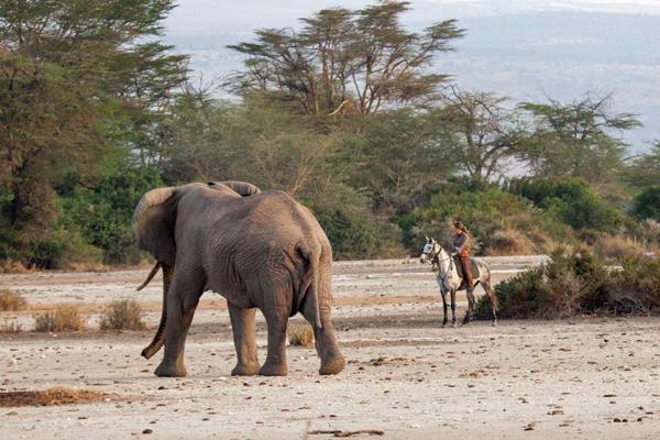 Elephant and riding safari guide Joanna Westermark Kaskazi Horse Safaris Tanzania