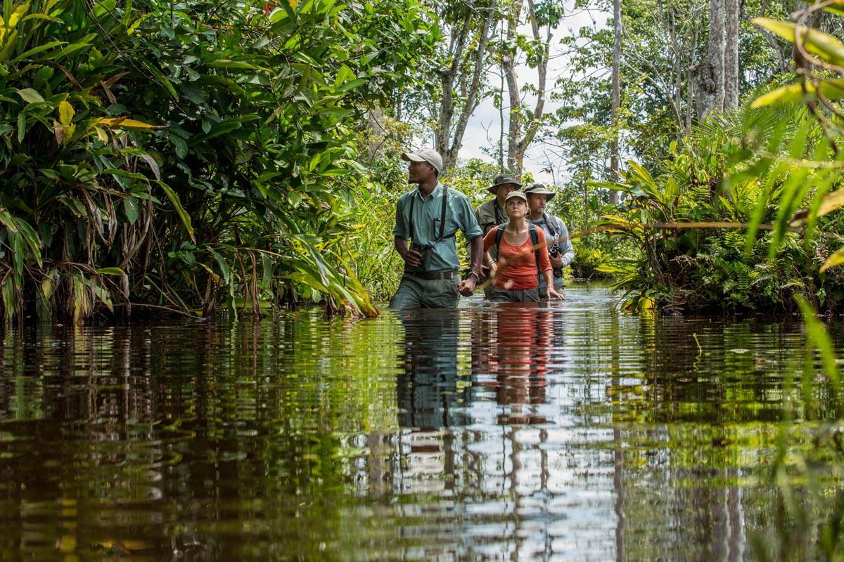 Lango Camp river walk, Odzala-Kokoua, Congo