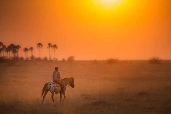 Ride Botswana solo rider at sunset credit Dean James Fitzpatrick