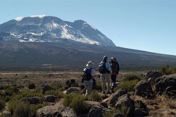 Trekking on Kilimanjaro walkers taking their time