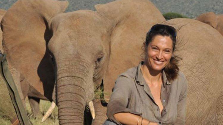 Saba Douglas-Hamilton with elephant - UK tour