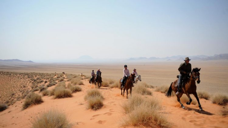 Namibia Desert Ride - Damaraland Elephant Ride group galloping though the Namibian desert