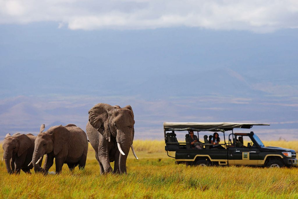 Three elephants on a safari drive at Tortilis Camp, Kenya