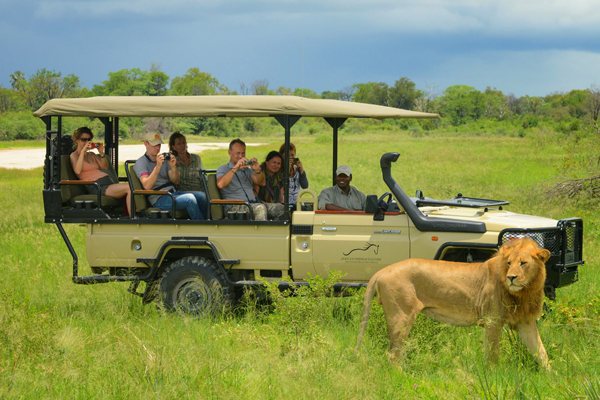 Family game drive at African Horseback Safaris