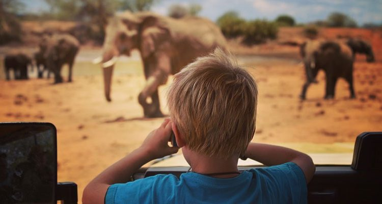 laikipia wilderness child watching elephants
