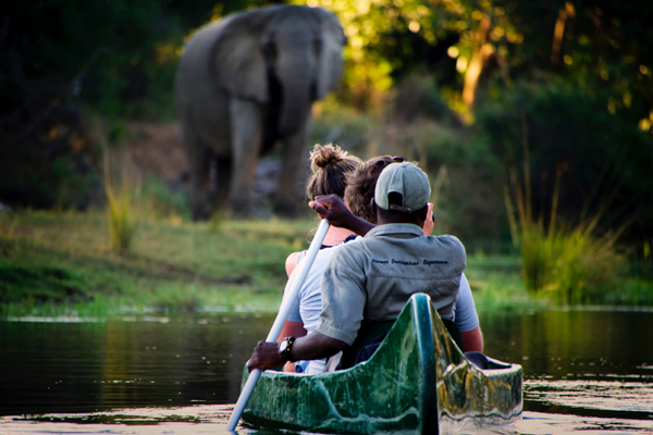 Canoe safari at Chongwe River House