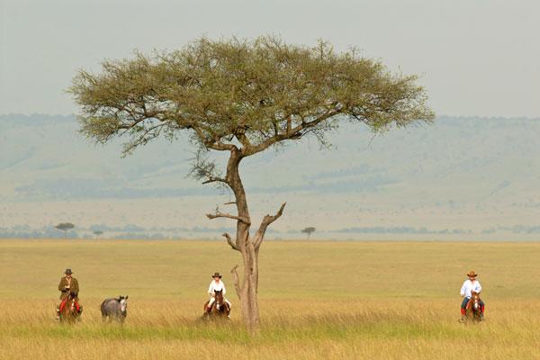 Safaris Unlimited, Kenya