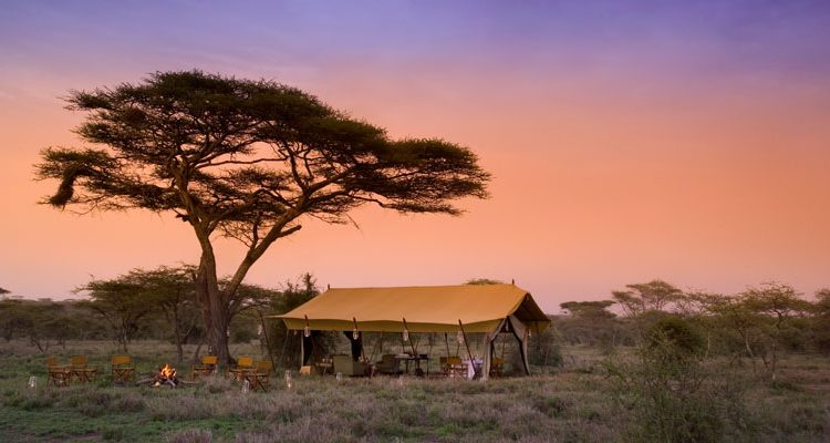 Mobile safaris - camp lit up with lanterns