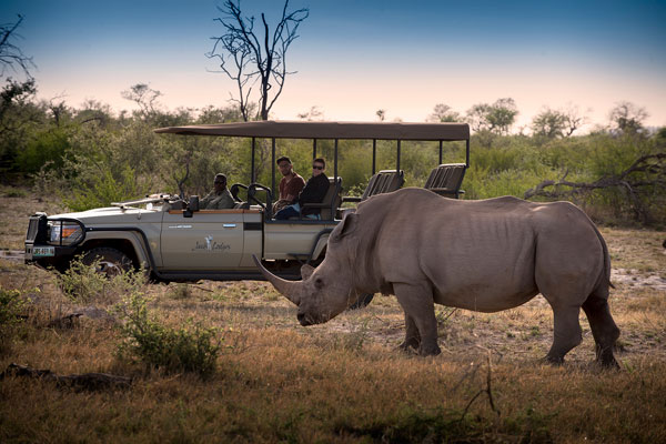 Jaci's Safari Lodge game drives, Madikwe, South Africa