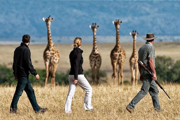 Mara Plains Camp, Masai Mara, Kenya, Great Plains Conservation