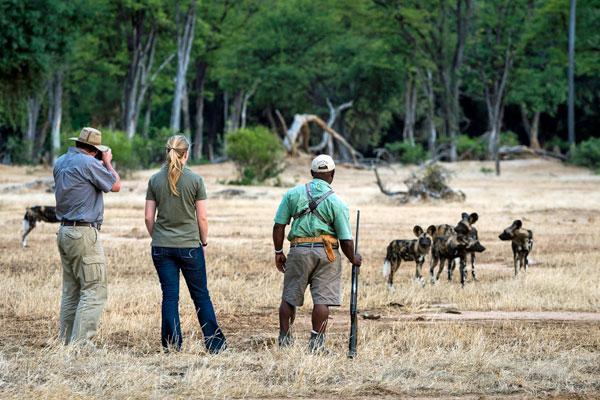 Ruckomechi, Mana Pools, Zimbabwe, Wilderness Safaris