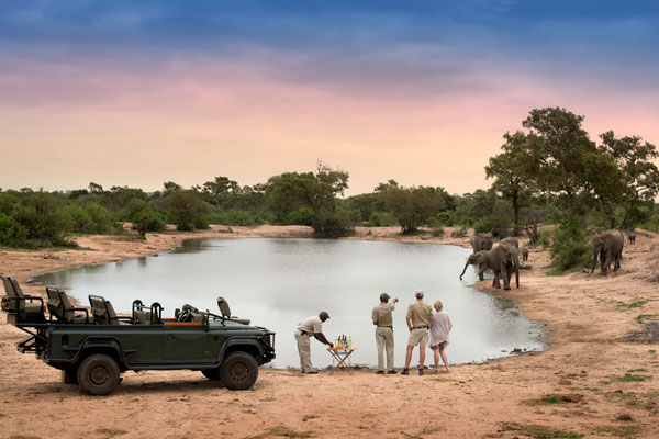 Tanda Tula game drives, Kruger, South Africa
