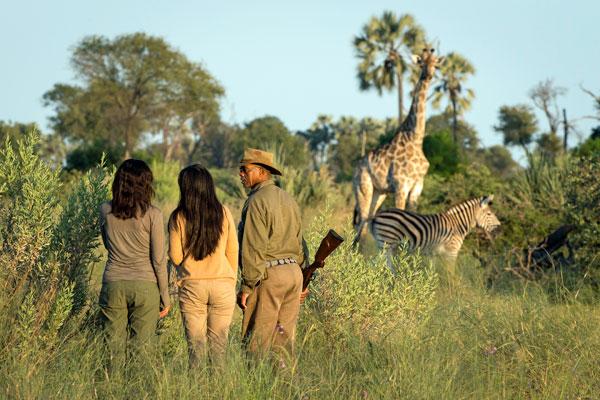 Seba Camp, Okavango Delta, Botswana, Wilderness Safaris