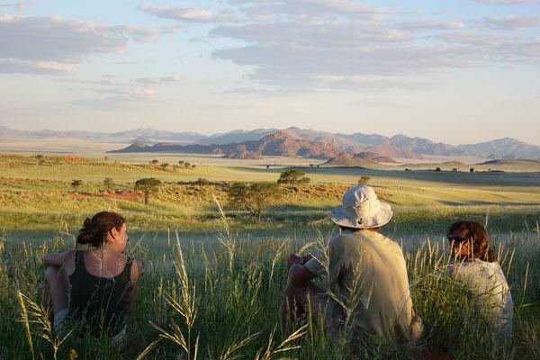Tok Tokkie trails, Namibia