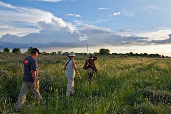 Kalahari Plains Camp, Kalahari, Botswana, Uncharted Africa