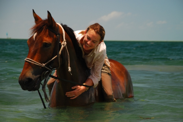 Mozambique Horse Safaris