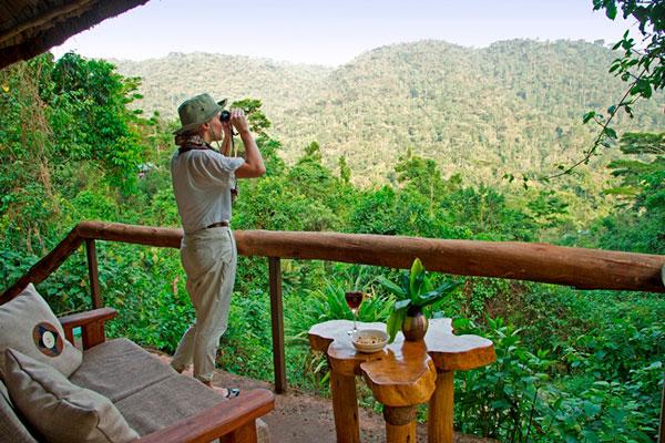 Bwindi landscape, Gorilla Forest Camp, Bwindi, Uganda