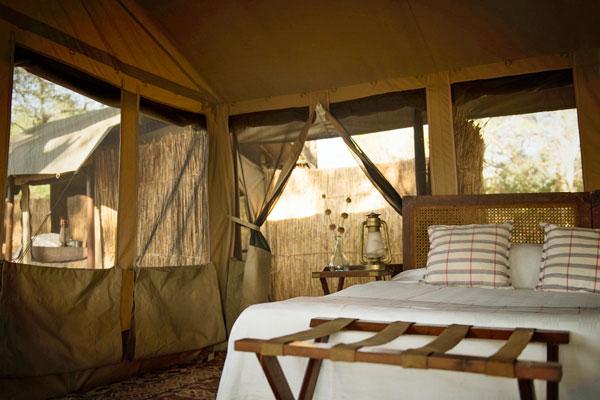 Accommodation, Chada Katavi Lodge